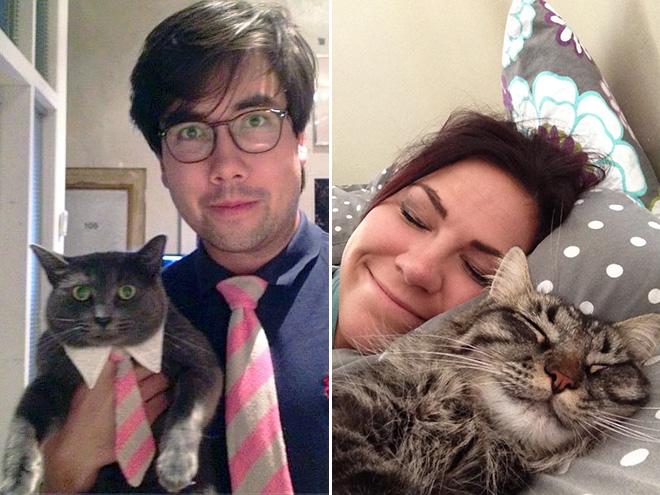 Кошки похожи на своих хозяев